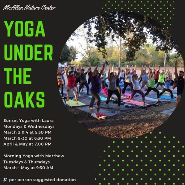 Yoga Under the Oaks